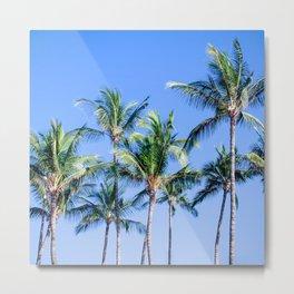 Palms in Living Harmony Metal Print