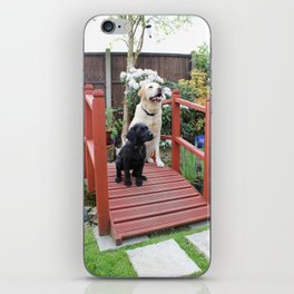 Garden Bridge iPhone Skin
