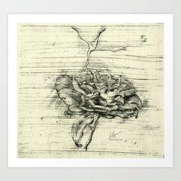 """Italian Courtyard Rose"" Art Print"