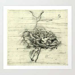 """Italian Courtyard Rose"" Art Print"