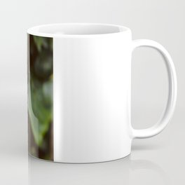 Buddha's Backyard III Coffee Mug