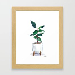 Rubber Plant Painting Framed Art Print