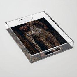 Figure Acrylic Tray