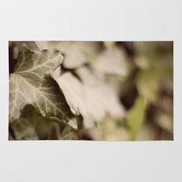 Trailing Ivy #1 Rug