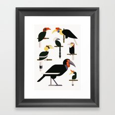 Hornbills  Framed Art Print