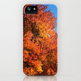 Fall Across the Street iPhone Case