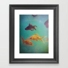 Three Fish More fish Framed Art Print