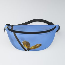 Pair of Life Fanny Pack