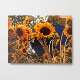 Sunflowers - flowers Metal Print