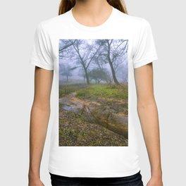 A walk in the mist T-shirt