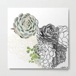 Succulent Study  Metal Print