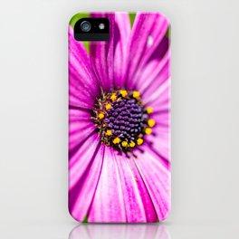 Macro flowers of Madeira iPhone Case