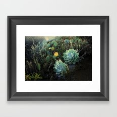 two of a kind Framed Art Print