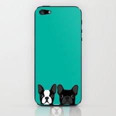 Boston Terrier and French Bulldog iPhone & iPod Skin