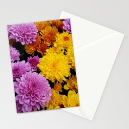 Bunches of Mums Stationery Cards