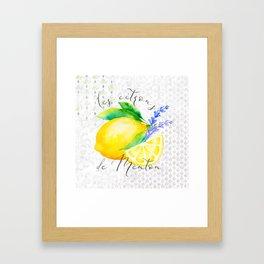 Les Citrons de Menton—Lemons from Menton, Côte d'Azur Framed Art Print