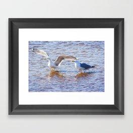 Two at Sea Framed Art Print