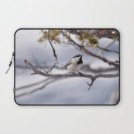 Winter Chickadee Laptop Sleeve