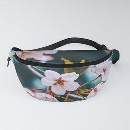 Cherry Blossoms Photograph. Fanny Pack