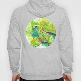 Giant Turtle Hoody