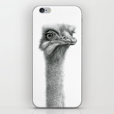 Funny Ostrich SK060 iPhone & iPod Skin