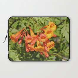 Natural Brass Blowing in the Breeze Laptop Sleeve