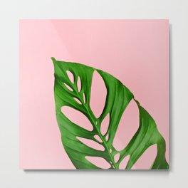 Plants on Pink v1 Metal Print