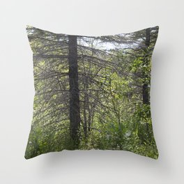 Summer Forest 3 Throw Pillow