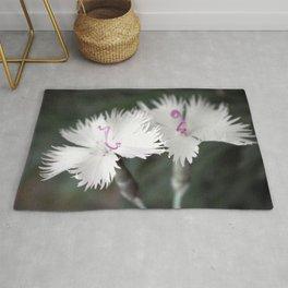 Stargazing, White Flowers Rug