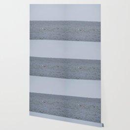 dolphins at play Wallpaper