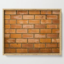 Background of red brick wall pattern texture. Great for graffiti inscriptions. Serving Tray