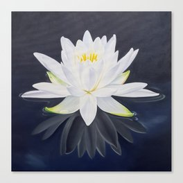My Ghost - Dramatic Waterlily on Black Canvas Print