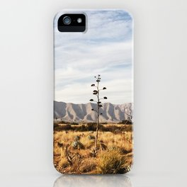 Guadalupe Mountains Scene iPhone Case