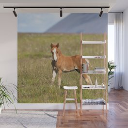 Watercolor Horse 29, Icelandic Pony, Höfn, Iceland, Ready or Not! Wall Mural