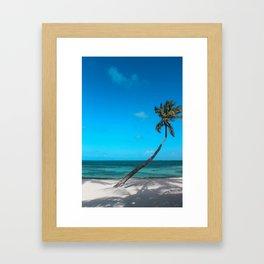 San Pedro Palm Framed Art Print