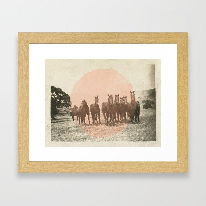 Band of Horses - Peach Framed Art Print