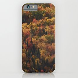 Landscape in Canada - Autumn iPhone Case