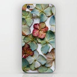 Hydrangea Petals no. 1 iPhone Skin
