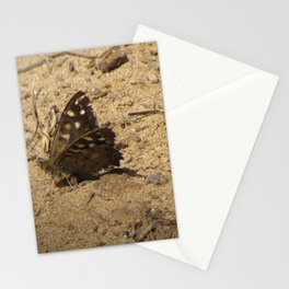 Brown Butterfly Stationery Cards