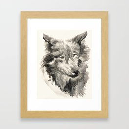 Gray Wolf Framed Art Print