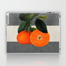 botanical stripes 6 -gray Laptop & iPad Skin