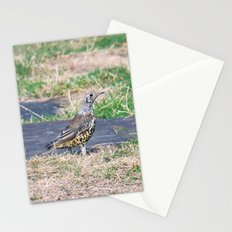 summer Visit Stationery Cards