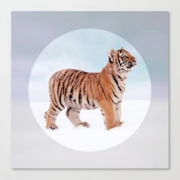 Save the Tiger - Endangered Species 9 Canvas Print