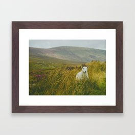 I see ewe on the Sally Gap Framed Art Print