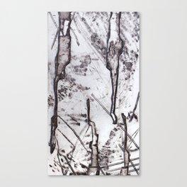 January Ice Canvas Print