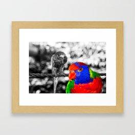 The bird in paradise Framed Art Print
