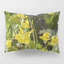 Glacier Lily Painterly Pillow Sham