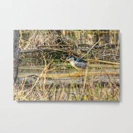 Heron Lurking Art Decor. Metal Print