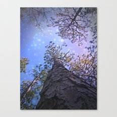 Outer Limits Canvas Print