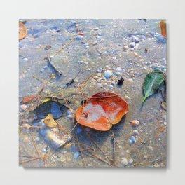 Leaves on the Sand Metal Print